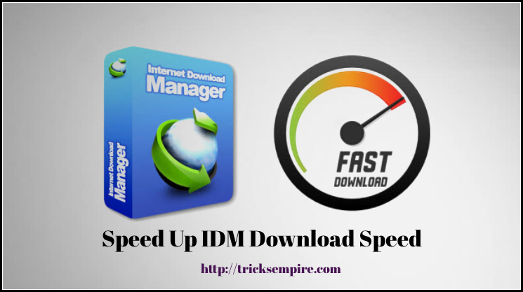 idm optimizer speed up idm