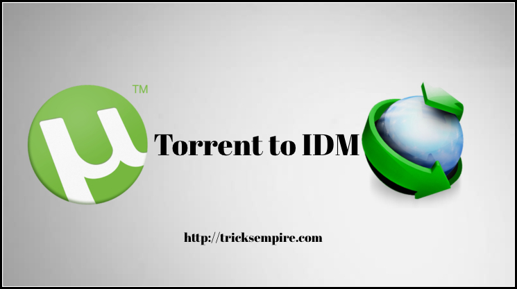 How to Download Torrent Files with IDM – Torrent to IDM (Internet Download Manager)